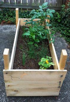 Mini Raised Garden Planter