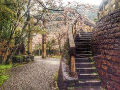 Arashyiama, Japan
