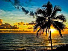 itacare beach, bahia #brazil #sunset