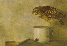 Jan Mankes | Little Owl