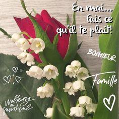 En mai fais ce qu'il te plait... Bon 1er mai!  #fetedutravail #1ermai #mai #may #themouse #365virginieb3 #fete #bonheur #portebonheur http://themouse.org