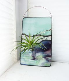 Heres a pretty combo with the pretty pastel mint sky and a fabulous subtle combination of purple, pale green, and mint streaks on the bottom! There is also a section of fun bubble glass in the middle. It gives the effect of an abstract landscape view and is a great way to bring color to your home or office space. The air plant included has a wire holder for easy removal of the plant when it needs to be watered (run under water a few times a week). The pretty TIllandsia Stricta is currently…