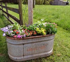 flowers planted in a water trough. love the amount and variety you can plant here.