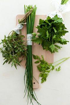 401 dishes - kitchen essentials   Fines Herbes