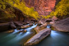 River of the Gods, Zion National Park, Utah, USA.
