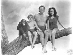 Cheeta, Boy, Tarzan, and Jane
