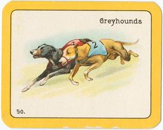 [Cigarette cards.] / Black Cat Greyhound Racing Game : a series of fifty-two cards.