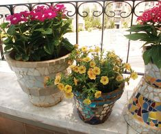 Mosaic pots- These are the pots I want to make with the old chipped plates. Looks like a great spring project.