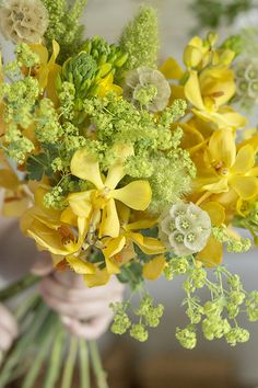 Lime Green and Lemon Yellow Flowers