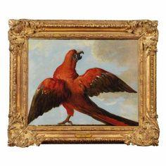 Attribué à Jean-Baptiste Oudry (Paris 1686 - 1755 Beauvais), Un perroquet aux ailes déployées