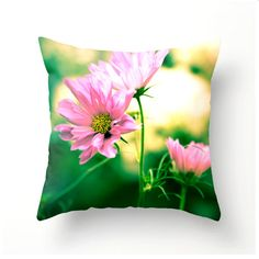 Colorful Cosmos 20x20 Decorative Throw Pillow by bbrunophotography #decor #home #interiordesign #decorating #pillows #accessories #flowers