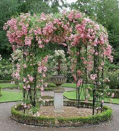 Rosenspaljé som ett runt smycke mitt i trädgården
