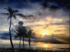 Things to do in Fort Lauderdale – free