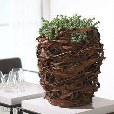 BLOOM's :: BLOOM's :: Deko-Ideen mit Blumen und Pflanzen