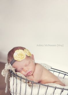 Bay Area Newborn Photographer   Kinley   Ashley McNamara Photography