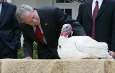 George W. Bush and the pardoned turkey at Thanksgiving