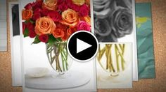 https://studio.stupeflix.com/v/MmX0qMpelN5Y/ cheap flower delivery,Flowers Online,flowers,www.flowerwyz.com,flower delivery,flower,flowers online,send flowers,flowers delivery,cheap flowers,cheap flower delivery