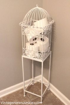 Bird cage storage (Bathroom)
