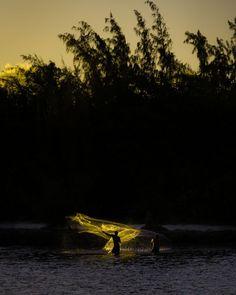 HAWAI'I Magazine's 2021 Photo Contest Winners - Hawaii Magazine Perfectly Timed Photos, My Magazine, Photo Contest, Underwater, Wildlife, Ocean, Hawaiian, Sunset, Island