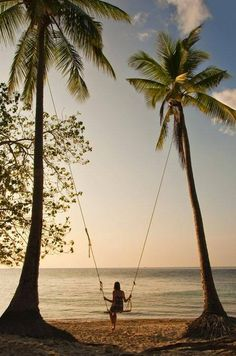 Did you never dream to swing between two palmtrees, on the beach ?