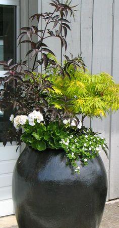 Container Garden by MMGD michaelmuro.com