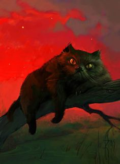 Waldemar Kazak, I wpuldn't want to be on this kittys bad side!