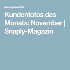 Kundenfotos des Monats: November | Snaply-Magazin