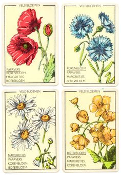 a vintage flower card game
