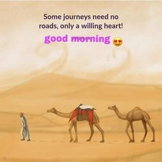 Journey means what : The way your heart leads you that's the matter of your journey, where your focus is.walking is not the important or meaningful unless you understand of true stepping. Good Morning Images Hd, Good Morning Messages, Morning Prayers, Good Morning Good Night, Good Morning Wishes, Morning Thoughts, Fb Quote, Motivational Picture Quotes, Inspirational Quotes