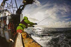 Der Nordostpazifik ist kein einfacher Arbeitsplatz: so idyllisch das Meer auch bei Sonnenschein aussieht, bei starken Winden und hohem Seegang verlangt es den Fischern alles ab. Vor allem die Beringsee ist einer der gefährlichsten Arbeitsplätze weltweit.