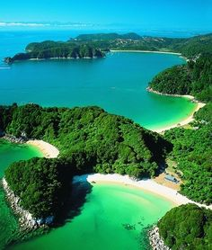 Nelson, New Zealand. I can totally imagine swimming in that water and relaxing on that beach!