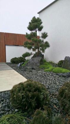 Asian Landscape, House Landscape, Landscape Design, Residential Landscaping, Garden Landscaping, Asian Garden, Rooftop Terrace, Plant Design, Beautiful Landscapes