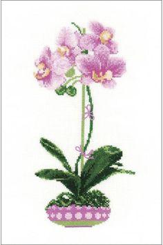 Lilac Orchid - Cross Stitch Kit
