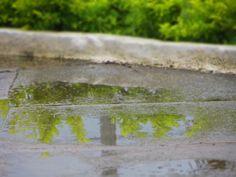 Reflexos da chuva