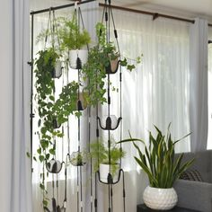 Excited to share this item from my shop Vertical garden multiple plant hanger living wall live column room divider hanging shelves wall planter macrame plant hanging gift Window Shelves, Hanging Shelves, Window Shelf For Plants, Shelves For Plants, Indoor Plant Shelves, Room Divider Shelves, Hanging Room Dividers, Rope Shelves, Glass Shelves