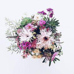 Guten Morgen  . Ein florales Mitbringsel vom Wochenende in Köln... Trotz Herumgeschleppe und langem Aufenthalt im heißen Kofferraum hält sich die Tischdeko auf auf meinem Tisch noch immer ganz hervorragend!  . A souvenir from my weekend in Cologne... #sisterMAGlovesCEWE #freude_teilen #photokinacewe @sister_mag . #gutenmorgen #goodmorning #morgens #mornings #flowers #flowermagic #flowerpower #flowerslovers #flowerstagram #instaflowers #flowersofinstagram #flowersmakemehappy #flowerstyling…