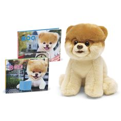 Boo the Dog Plush and books! I want boo everything!