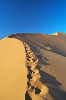 One of the most luxurious stays you can have in Namibia is at Little Kulala - surrounded bt beautiful desert and some of the world's highest sand dunes. Big Daddy, African Elephant, Africa Travel, Amazing Destinations, Beautiful World, Wonders Of The World, Places To Travel, Oasis, In The Heights