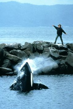 "Free Willy --- ""Go, Willy, Goooo....!!""  Heather, one of your favorite movies when you were little. :)"
