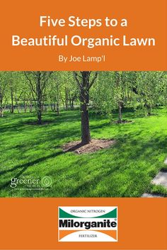 Organic lawns help build the overall health of the growing environment that  feeds your lawn. Doing it naturally will get you green grass, but with  better, ...
