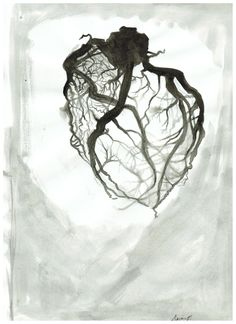 Coronary vessels by Alyssa Bean.jpg (1700×2338)