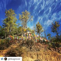#Repost @gitikagrover with @repostapp Get featured by tagging your post with #talestreet #bhutan #tigersnest #tigersnestmonastery #paro #wanderlust #talestreet #monastery #travel #travelph #traveler #travelislife #travelawesome #travelbhutan #exploreworld #travelglobe #explorer #exploration #travelbug #travelous #travelogue #sky #skylovers #hills #trees #wander #wanderer #wanderlust #twitter