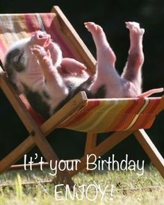 Piggy happy birthday