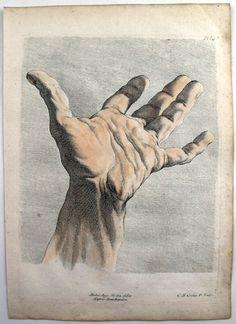 Figure Drawing: Charles-Antoine Jombert and Charles-Nicolas Cochin. Life Drawing, Figure Drawing, Painting & Drawing, Art Sketches, Art Drawings, Hand Anatomy, Anatomy For Artists, Anatomy Drawing, Hand Art