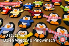 pingwin9