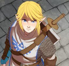 Link | Hyrule Warriors Artist Unknown