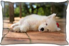 11 Different Styles Samoyed Pillow Cover Case