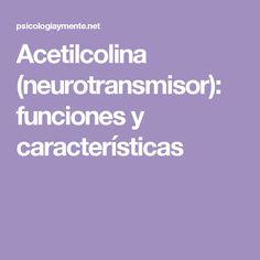 Acetilcolina (neurotransmisor): funciones y características