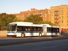 Description MTA New York BCity B BBus