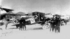 Albatros D II